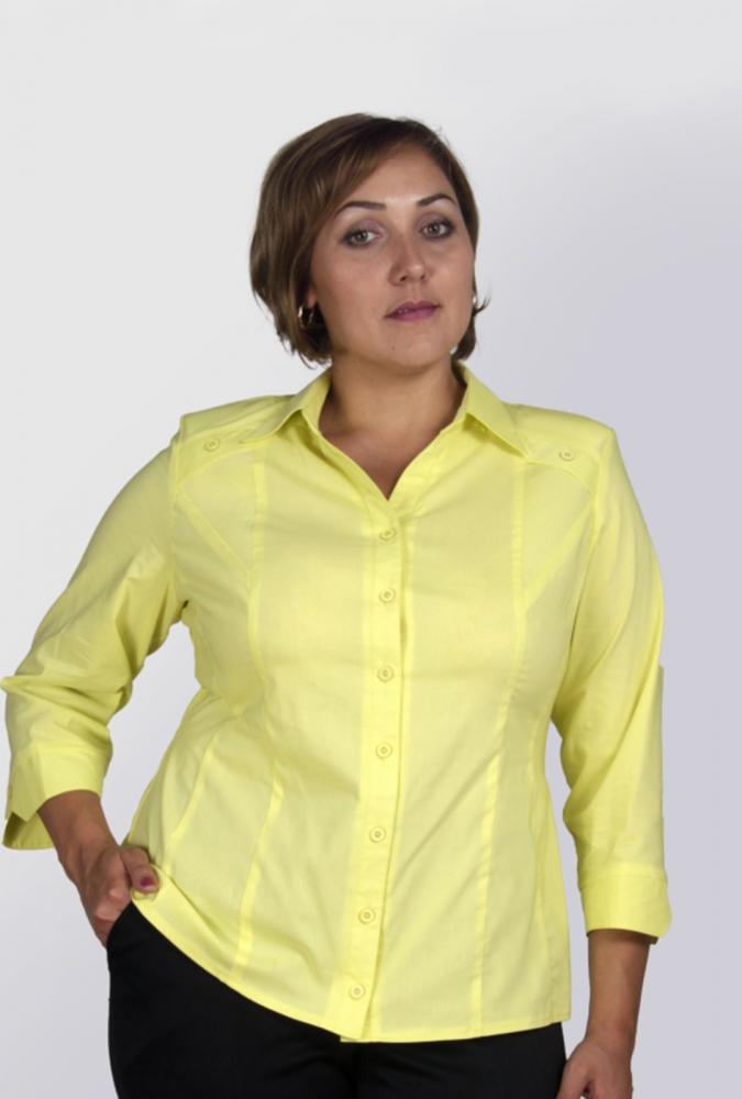 Блузки Ivona